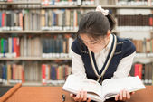 Student reading a textbook in library — Stock Photo