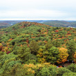 Stock Photo: Algonquin National Park during autumn