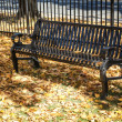 Metal bench in park — Stock Photo #37137815