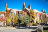 在多伦多大学三一学院 — 图库照片