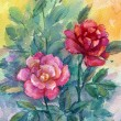 Roses on a abstract background. Watercolor. — Stock Photo