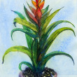 Watercolor Guzmania — Stock Photo