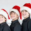 Brothers at Christmas — Stock Photo