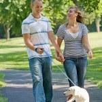 Young Couple Walking Dog — Stock Photo