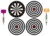 Professional darts — Stock Vector