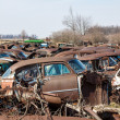 Stock Photo: Junk Cars