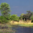 Stock Photo: Africlandscape, Botswana