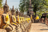 Row of Buddha statues at the temple in Ayutthaya — Photo