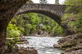 Pequeña casa de piedra en el bosque de escocia — Foto de Stock