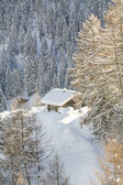 Wooden rustic style house at Switzerland Alps — ストック写真