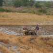 Vietnam 10 of December 2013. Vietnamese farme rides a tractor — Stock Photo
