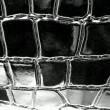 Stock Photo: Black crocodile leather