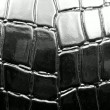 Crocodile leather — Foto Stock