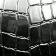 Crocodile leather — Stock Photo