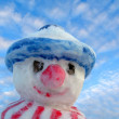 Snow man — Stock Photo