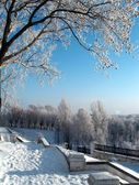 Winterlandschap — Stockfoto