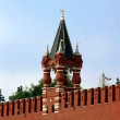 Stock Photo: Tower of the Moscow Kremlin