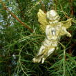 Christmas angel — Stock Photo #32638449