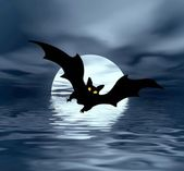Black night. Moon and bat — Stockfoto