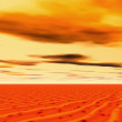 Sunset in desert — Stock Photo