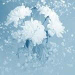 flores de color azul en la niebla azul — Foto de Stock