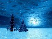 Two Christmas trees — Stock Photo