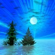 Two Christmas trees in moonlight — Stock Photo