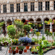 Flowers on Grand Place , Brussels, Belgium. — Stock Photo