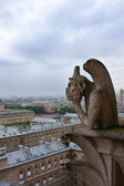 Notre Dame of Paris, Gargoyle — Stock Photo