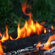 Fire — Stock Photo #33069967