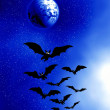 Halloween.  Moon and bats — Stock Photo