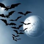 Halloween. Moon and bats — Stock Photo #33074333