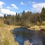 Autumn landscape. River — Stock Photo