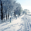 Winter road — Stock Photo #33128353