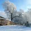 Winter scene — Stock Photo #33128441