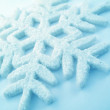 Snowflake — Stock Photo #33128515