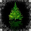 Green Christmas-tree — Stock Photo
