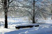 Kış doğa park — Stok fotoğraf
