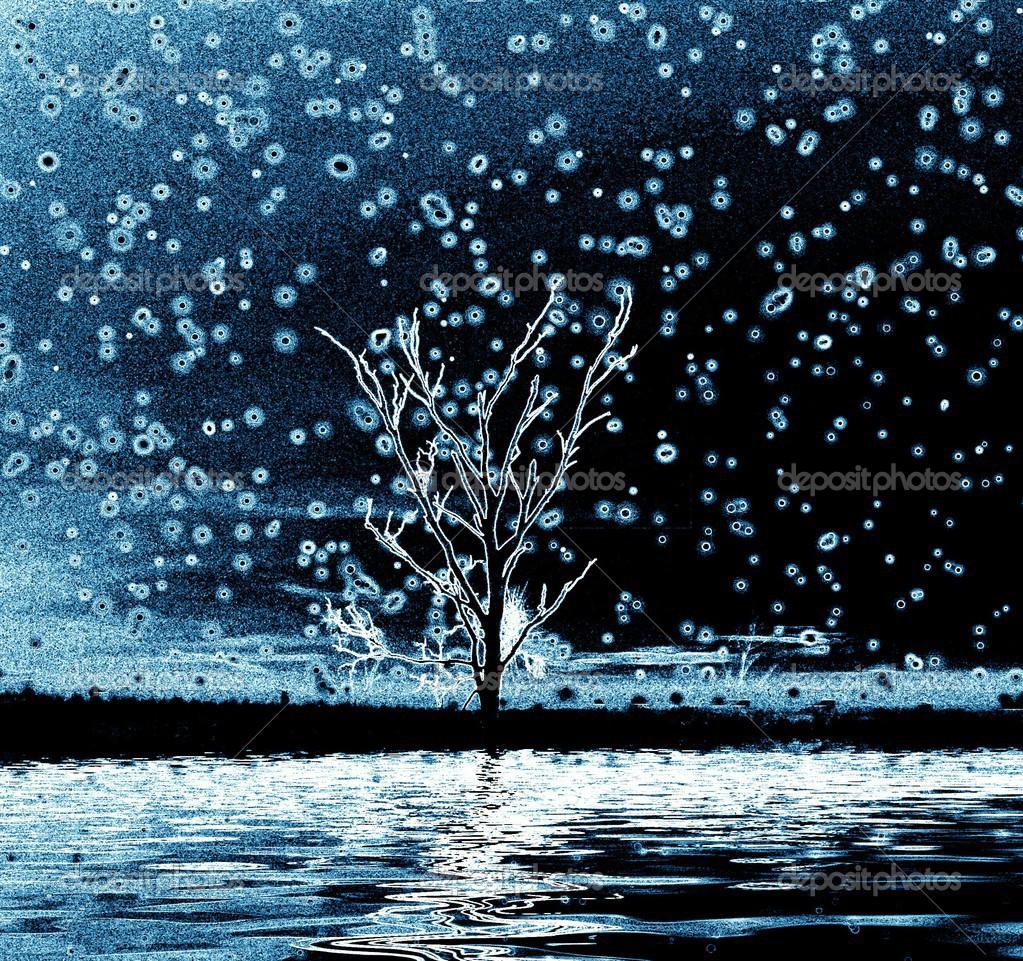 孤独的冬天树– 图库图片