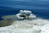 氷の川 — ストック写真