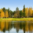 Picturesque autumn view with lake — Foto Stock