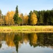 Autumnal landscape with lake — Stock Photo #33553633