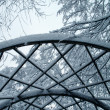 Stock Photo: Snowy trees and trellis in park