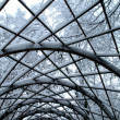 Snowy trees and trellis in park — Foto de Stock