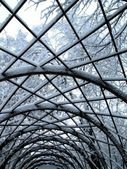Snowy trees and trellis in park — Stock Photo