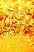 Golden frosty pattern — Stock Photo