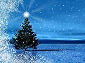 Christmas tree with star on top — Stock Photo