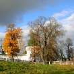 Beautiful landscape in park . Autumn scene — Stock Photo #35389207
