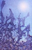 Blue frosty pattern — Stock Photo