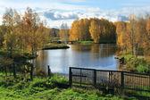 Beautiful landscape in park . — Stock Photo